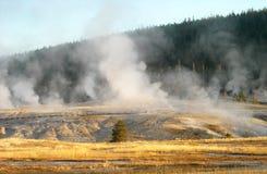 Den Yellowstone nutionalen parkerar Arkivfoto