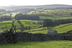 In den Yorkshire-Tälern Stockbilder