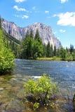 Den Yosemite dalsikten av El Capitan vaggar, Yosemite, den Yosemite nationalparken Royaltyfri Bild
