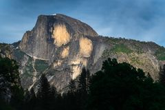 Den Yosemite nationalparken är en Förenta staternanationalpark Royaltyfri Bild