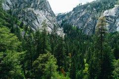 Den Yosemite nationalparken är en Förenta staternanationalpark Royaltyfri Foto