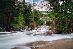 Den Yosemite nationalparken är en Förenta staternanationalpark arkivfoton