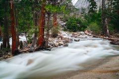 Den Yosemite nationalparken är en Förenta staternanationalpark arkivbild