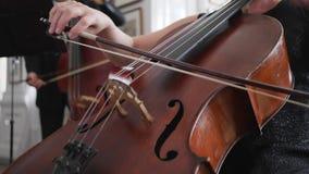Den yrkesmässiga cellisten spelar i ultrarapid, närbildrader av en violoncell lager videofilmer