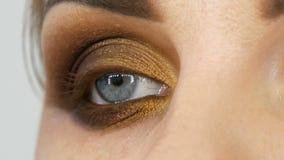 Den yrkesmässiga ledar- makeupkonstnären applicerar beige ögonskugga med fingret på modellöga på slutet för skönhetsalongen upp s stock video