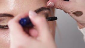 Den yrkesmässiga makeupkonstnären applicerar mascara på snärtar av kvinnan, närbild arkivfilmer