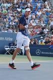 Den yrkesmässiga tennisspelaren John Isner av Förenta staterna firar seger efter den i andra hand runda matchen på US Open 2015 Arkivbild