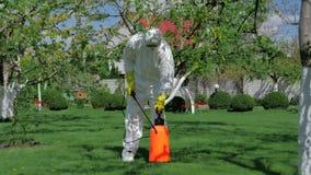 Den yrkesmässiga trädgårdsmästaren förbereder sig att bespruta träd arkivfilmer