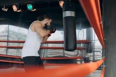 Den yrkesmässiga unga boxaren i cirkeln, övar tekniken av slag, kuggen, försvar, och uttålighet, blöter på arkivfoton