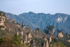 Den Zhangjiajie medborgaren Forest Park i Hunan allmänna Tianzishan vaggar Qunfeng Arkivbilder