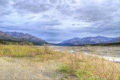 Denali公园国家公园 库存图片