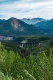 Denali国家公园阿拉斯加 免版税库存图片
