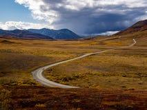 Denali在秋天的公园路 库存照片