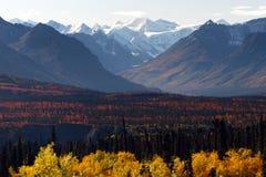 Denali范围秋天颜色阿拉斯加原野冬天季节 免版税库存图片