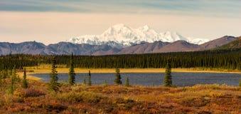 Denali范围Mt麦金莱阿拉斯加北美 免版税图库摄影