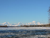 Denali το χειμώνα Στοκ Εικόνες