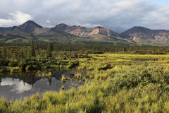 Denali. View to Alaska range in the Denali national park, Alaska. Small lake in the front, cloudy sky Stock Photography