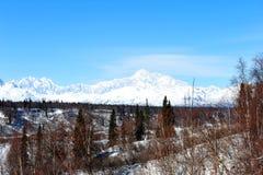Denali, aka Mount McKinley Стоковая Фотография