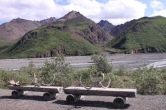 Denali benches Royalty Free Stock Image