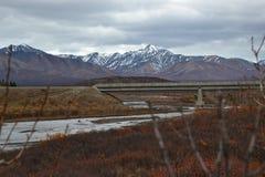 Denali dell'Alaska Fotografia Stock