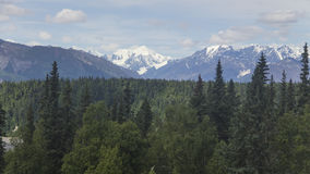 Denali in the Distance Royalty Free Stock Images
