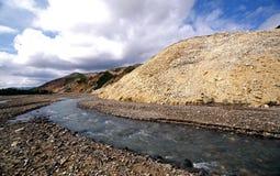 Denali ha intrecciato il fiume Immagine Stock Libera da Diritti