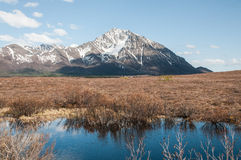 Denali Highway Royalty Free Stock Photography