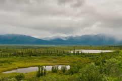 Denali highway landscape Stock Images