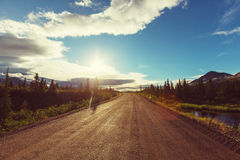 Denali highway Stock Photography
