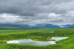 Denali highway. Pond and mountain in Denali highway, Alaska, USA Royalty Free Stock Photos