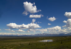 Denali Hwy in Summer Stock Photo