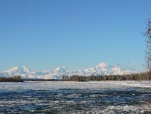 Denali i vintern Arkivbilder