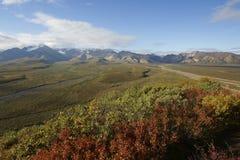 Denali landscape Stock Images