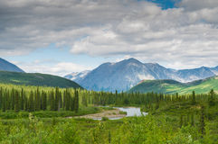 Denali landscape. Mountain and river next to denali national park, alasks USA Royalty Free Stock Photo