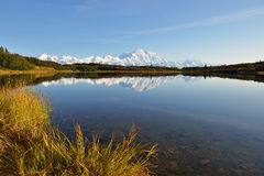 Denali Mountain and Reflection Pond Royalty Free Stock Images