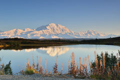 Denali Mountain and Reflection Pond Stock Image
