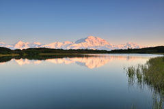 Denali Mountain and Reflection Pond Stock Images