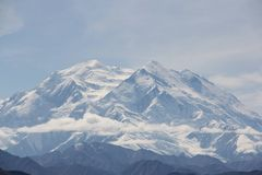 Denali Mountains. Summer in Denali National Park Alaska Stock Photography