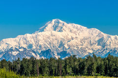 Denali. Mt Denali (sometimes referred to as Mt Mckinley) is the tallest peak in North America, measuring a staggering 20,310 feet Royalty Free Stock Photography