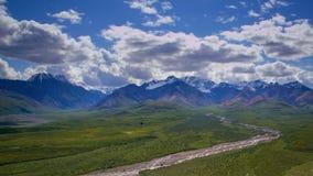 Denali Nationaal Park en Domein stock afbeeldingen