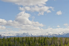 Denali National Park Royalty Free Stock Images