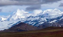 Denali national park stock photos