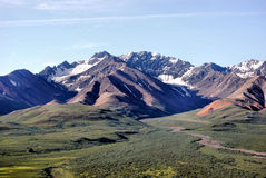 Denali National Park. Alaska mountain meadow Stock Photo