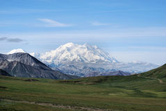 Denali National Park. Alaska mountain meadow Royalty Free Stock Photo