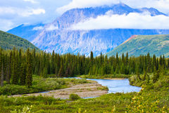 Denali National Park, Alaska Royalty Free Stock Image