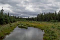 Denali National Park, Alaska. Enali National Park and Preserve is a national park and preserve located in Interior Alaska, centered on Denali, the highest Stock Images