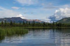 Denali National Park, Alaska. Enali National Park and Preserve is a national park and preserve located in Interior Alaska, centered on Denali, the highest Royalty Free Stock Photos