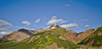 Denali National Park in Alaska USA Royalty Free Stock Photography