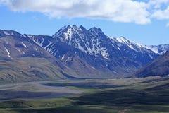 Denali National Park Royalty Free Stock Photos