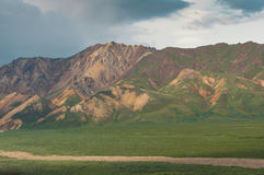 Denali national park Stock Photography